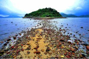Arrow Travel 綠色生態遊 | 「香港世界地質公園‧橋咀洲」西貢海鮮風味一天遊